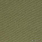 aruba-willow