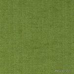 ascot-kiwi